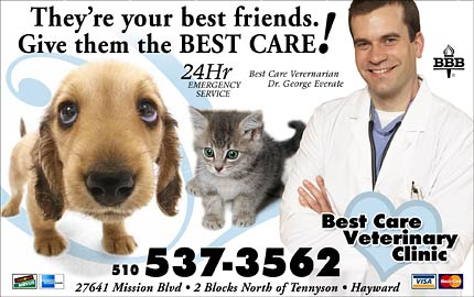 Best Care -Yellow Page Ad
